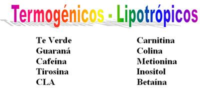Termogénicos - Lipotrópicos